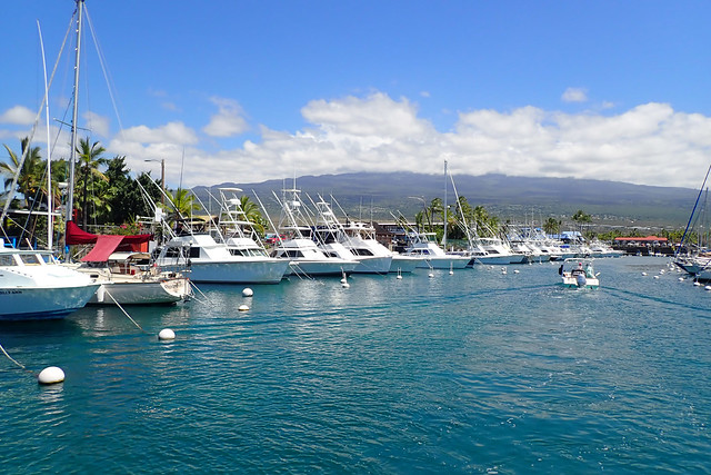 paradise harbor