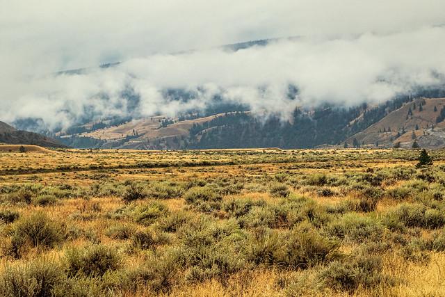 Sheep Range - British Columbia