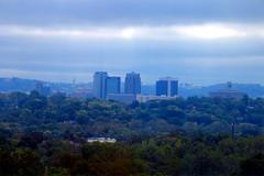 My Blue Birmingham