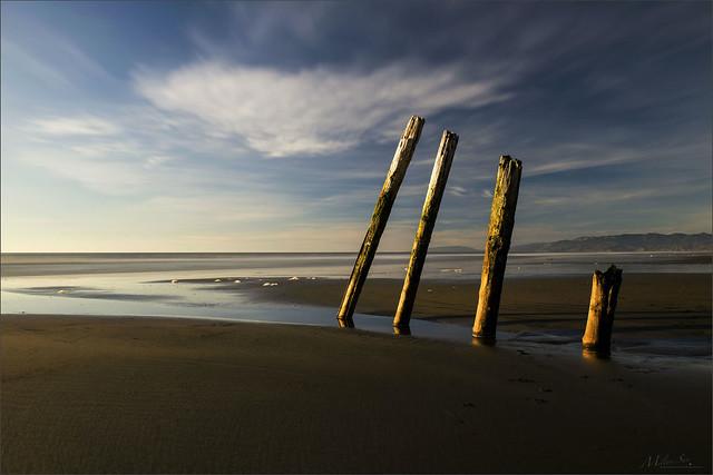 Some Pillars on the Beach