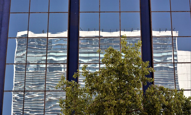 DF Reflection 5
