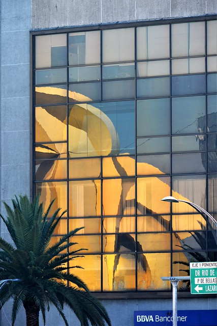 DF Reflection 6