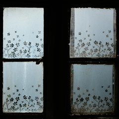 Window - Stow on the Wold.