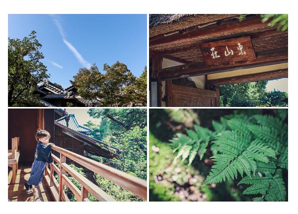 東山荘 名古屋市の古民家 茶室