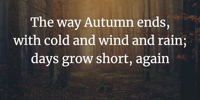 Autumn Haiku