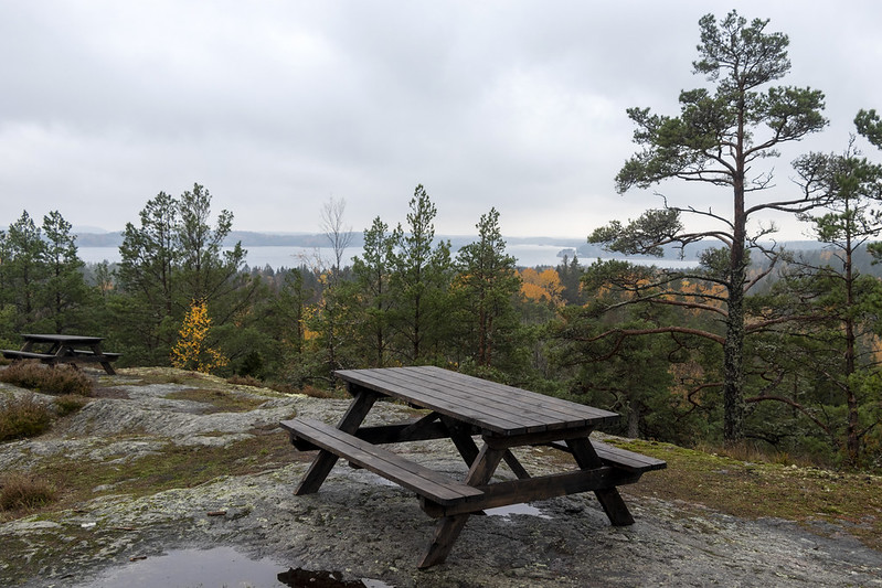 Lookout Point Benches