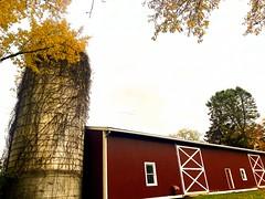 Pittsford Farms Dairy, Pittsford, NY
