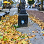 Leaf covered streets of Preston