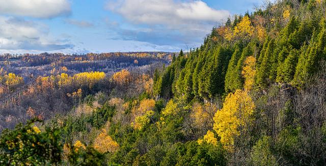 Canadian Autumn Panorama
