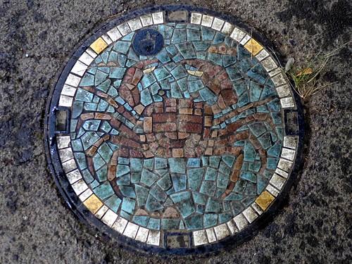 Kawasaki Kanagawa, manhole cover 6 (神奈川県川崎市のマンホール6)