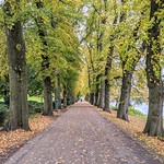 Autumn passage at Avenham Park, Preston