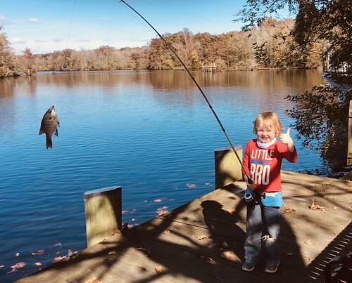 Photo of young boy with a bluegill on the end of his fishing rod