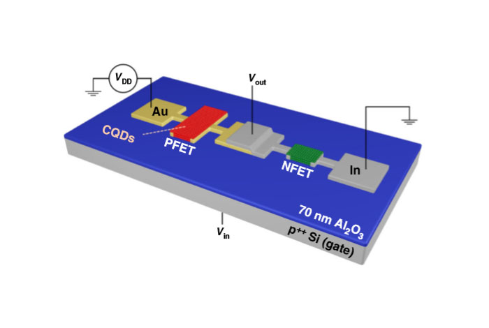 By depositing gold (Au) and Indium (In) contacts, researchers create two crucial types of quantum dot transistors on the same substrate, opening the door to a host of innovative electronics.
