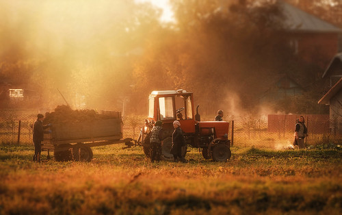 village autumn fall smoke haze nature bbcnature nationalgeographic work field light october canonfan canonphotography canonnature tractor people lifestile rurallife