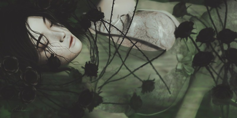 Pryce Macabre Halloween Challenge 3.0 - La Dormeuse