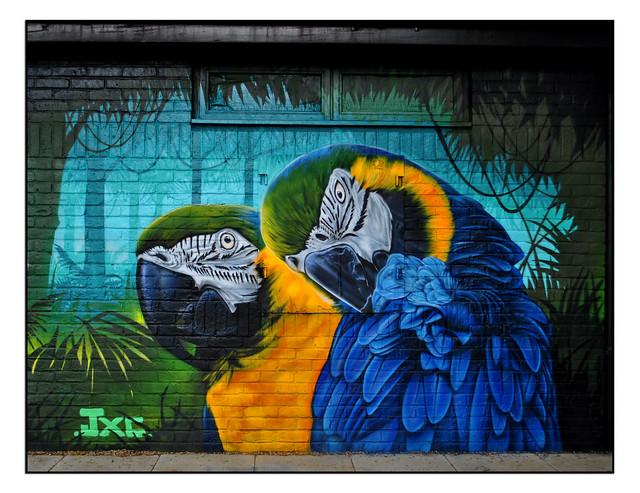 LONDON STREET ART by JXC