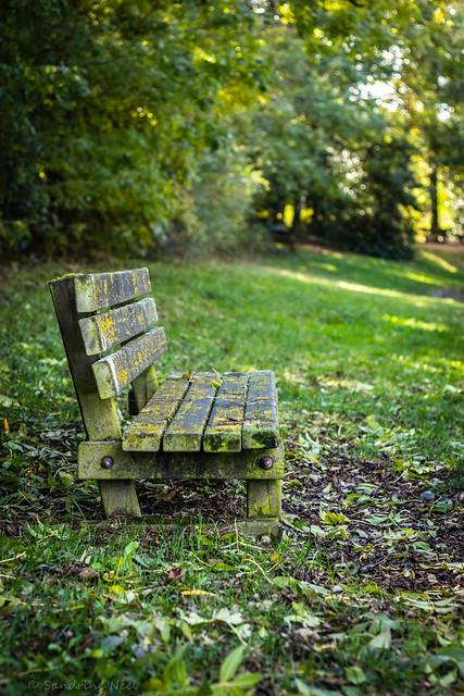 À m'asseoir sur un banc cinq minutes avec toi Et regarder les gens tant qu'y en a...