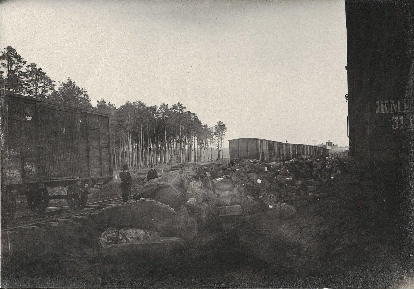 34. Шесть вагонов почты для 4-й Армии, выгруженной на станции Влощова