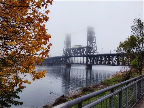 werehere water river bridge tree fence portland oregon willametteriver steelbridge reflection