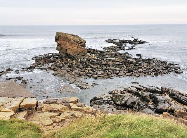 Charlie's Garden - Coastal Erosion