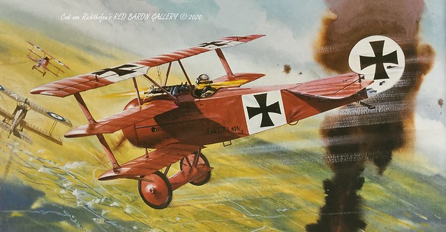 Fokker Dr.I - Painting by Roy Cross