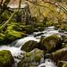 Borrowdale Hidden Water Mill Lake District