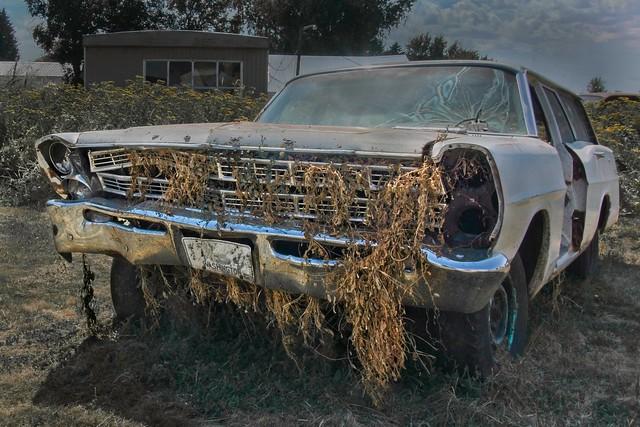 Weedy Junked Car 3855 C