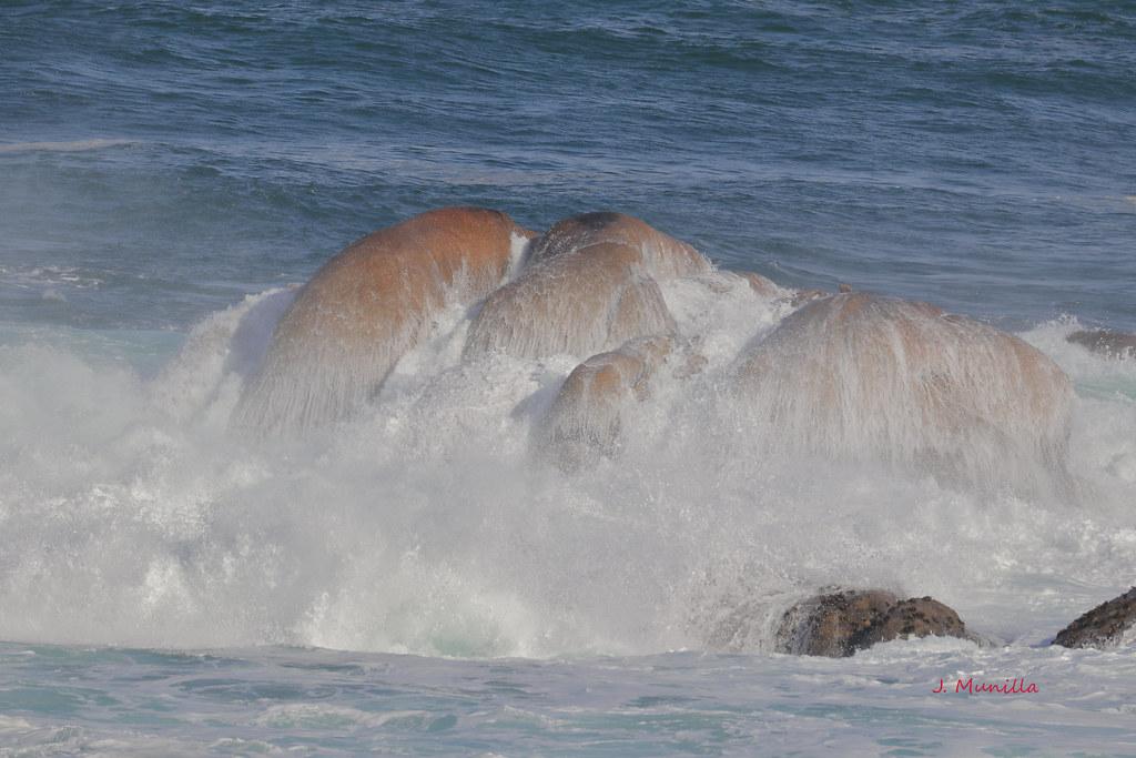 Agua de mar IMG_2073