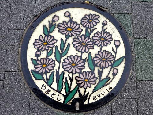 Yamato Kanagawa, manhole cover (神奈川県大和市のマンホール)