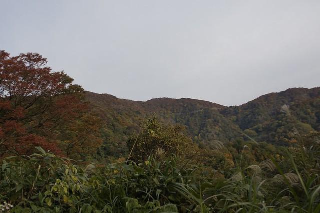紅葉の医王山
