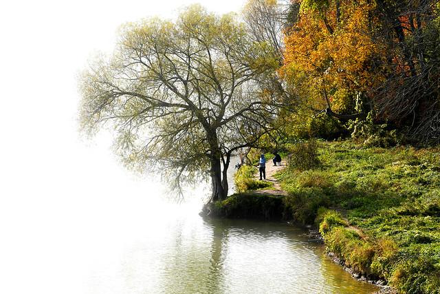 Fishing Along the Riverbank