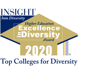 Higher Education Excellence in Diversity Award 2020