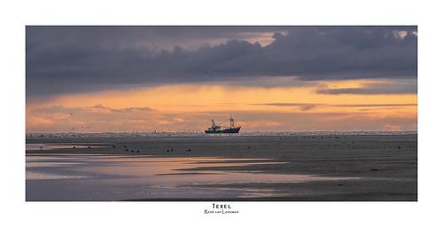 Sunrise fisher