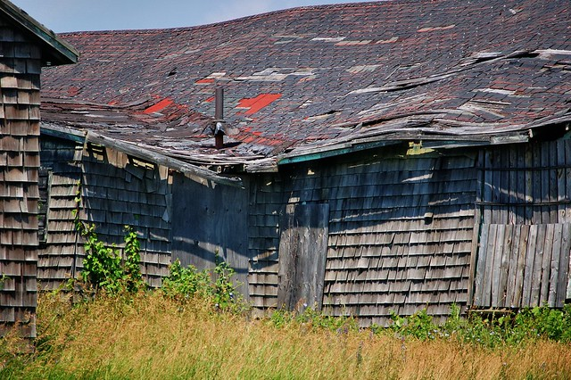 Collapsing - WWII-era building, Picton Airport, Prince Edward County, Ontario