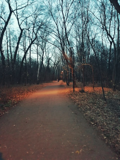 Everning walk