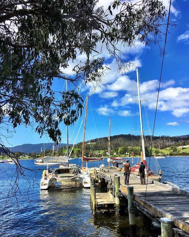 230/366 •...the joy of waking up SOMEWHERE DIFFERENT!! Headed out of the Huon River yesterday morning (no offence Huon River, but a change is long overdue) and sailed (we really did) around to Cygnet where we tied up to this jetty and walked into town to
