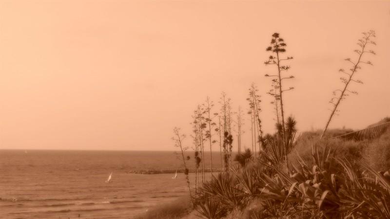 Pictorial landscape
