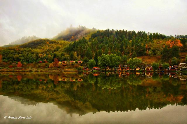 Colors of Autumn in a rainy misty day of October. Lake Arlói.  Bükk region, Hungary - Az ősz csodás színei egy hideg, esős, ködös októberi napon. Arlói tó.  Bükki-vidék
