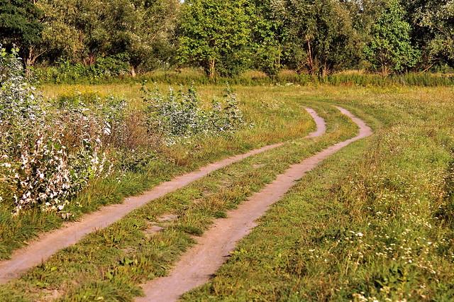 Path / Ösvény