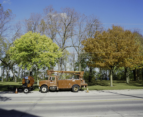Truck camouflaging with fall tree
