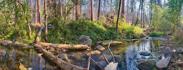Lewis Creek - Sierra National Forest - California