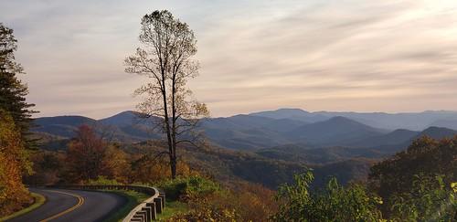 tree sunset mountains greatsmokymountains road blueridgeparkway landscape fall autumncolors
