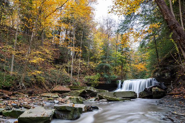 Autumn Leaves at Willey Creek Falls