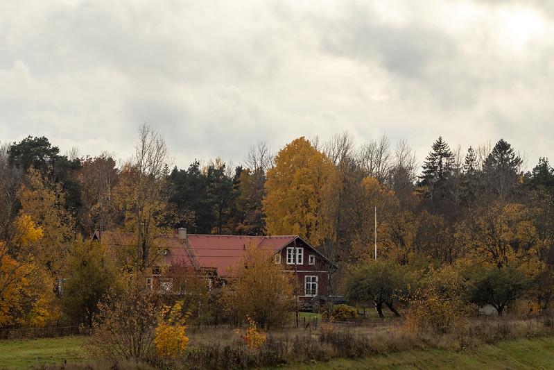 Berga Skola