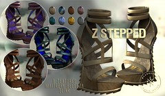 Z Stepped Shoes