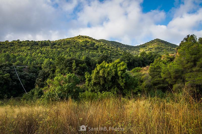 Montañas de La Selva del Camp desde el Camí del Rec