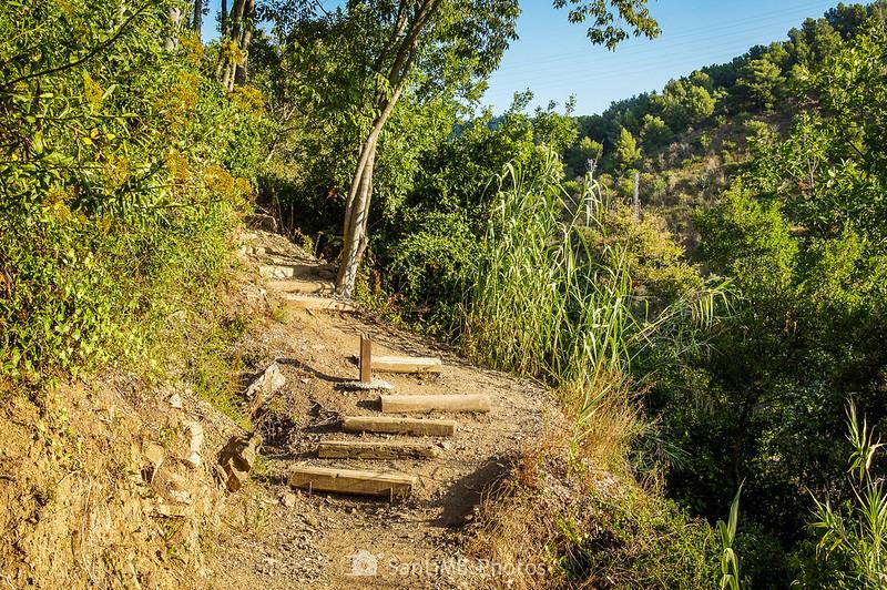 Peldaños de madera en el Camí del Rec