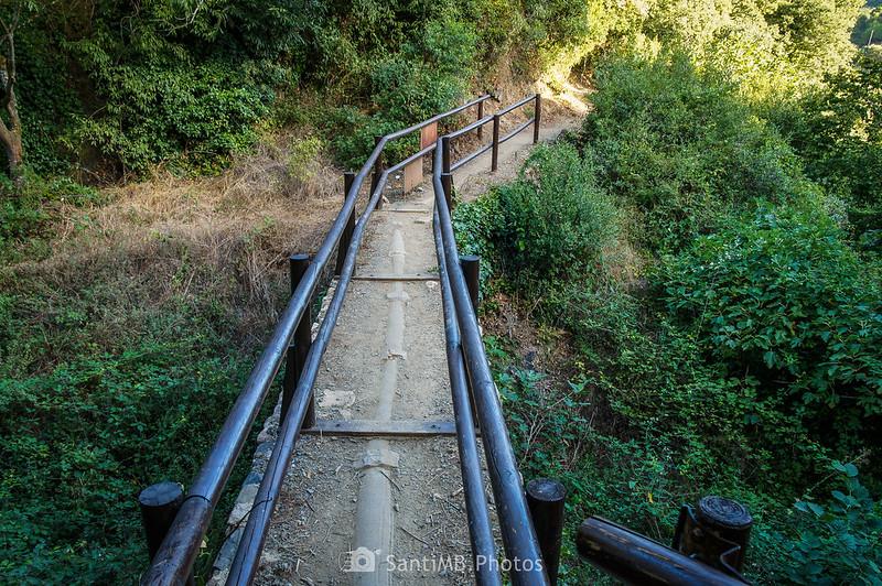 Camí del Rec de la Selva del Camp