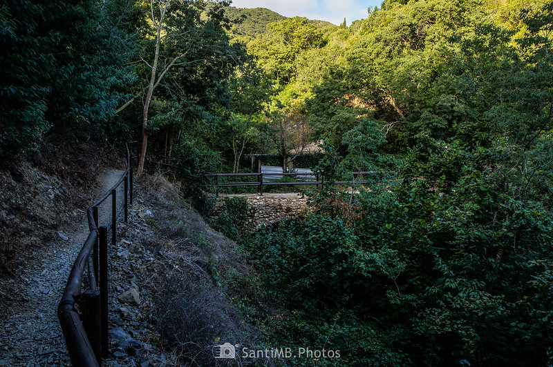 Puente en el Camí del Rec