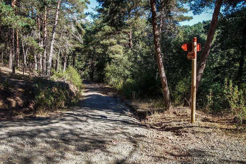Camí Vell de Montblanc